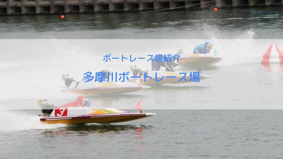 多摩川ボートレース場の水面特徴・予想方法